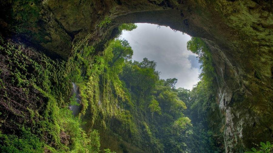 Τροπικό δάσος El Yunque, Puerto Rico
