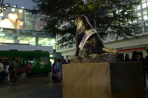 Hachiko statue at night