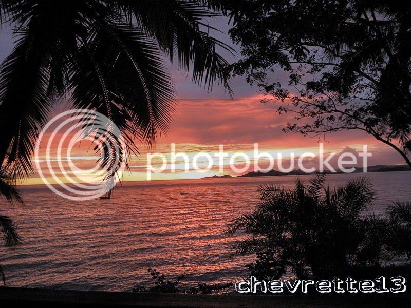 http://i1252.photobucket.com/albums/hh578/chevrette13/Madagascar/DSCN2728Copier_zpsd316925f.jpg