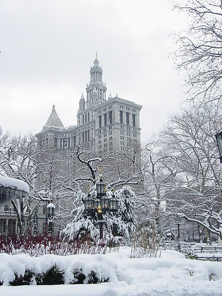 File:New York City Hall Park winter.jpg