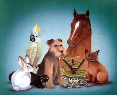 Refranes De Animales Y Cosas Con Su Significados
