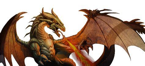 dragon png  meridiann  deviantart
