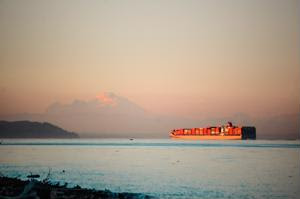 Hanjin bankruptcy: Negative effects on retail supply chains