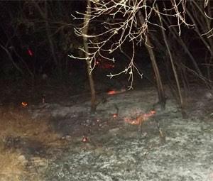 Em agosto, incêndio queimou boa parte da vegetação (Foto: Bruno Campelo)