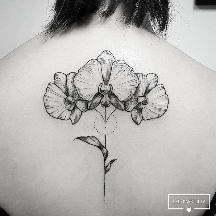 30 Gorgeous Orchid Tattoo Designs And Ideas Page 2 Of 3 Tattoobloq