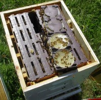 Ross round hive 200x198 The Anatomy Of A Honeybee Hive