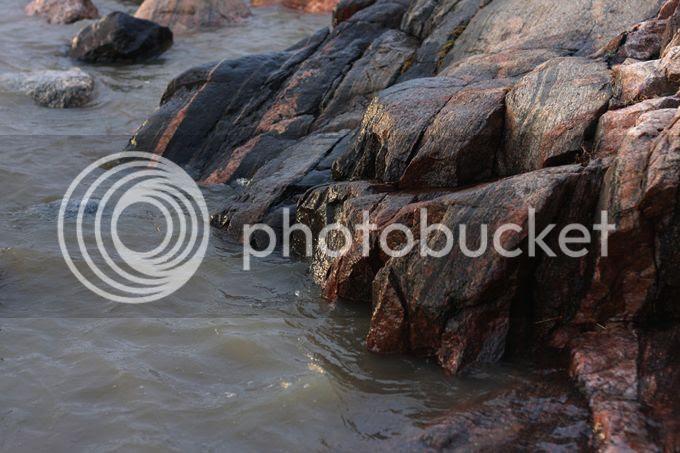 photo blaringbaumlrslandet346_zpscadaabc0.jpg