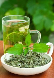 herbatka z pokrzywy wlasciwosci