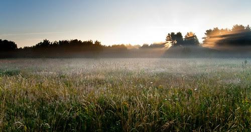 Päiksetõus Hiiumaal / Sunrise
