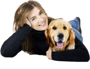 Pet Health Insurance: The Only Guide You Need for Your Dog