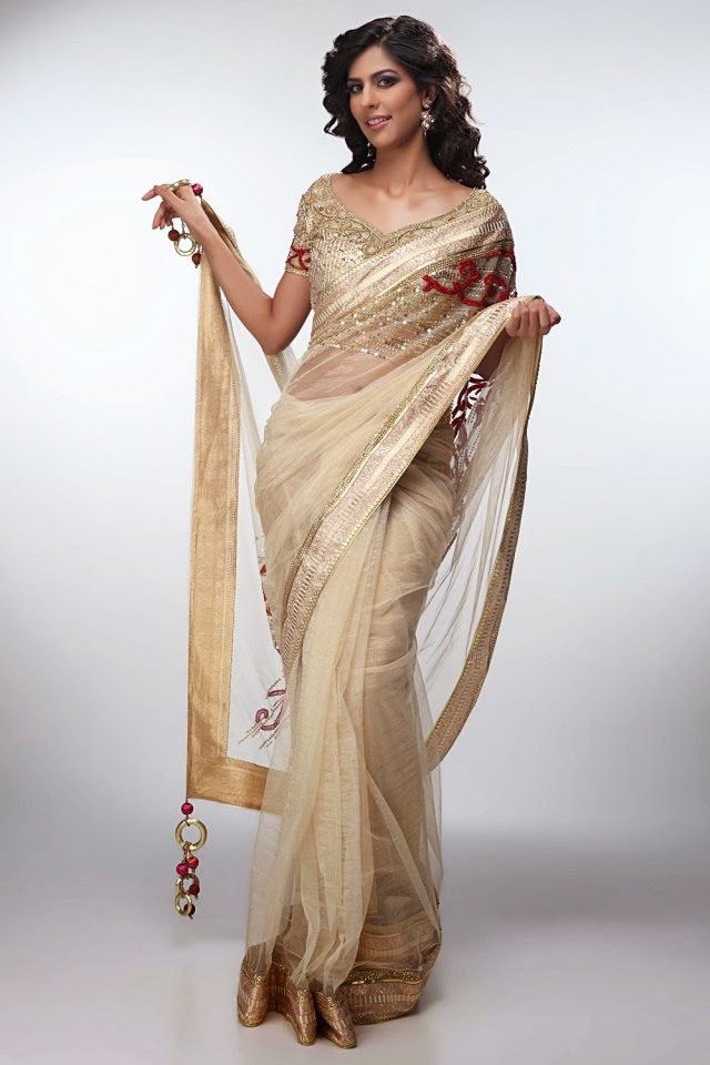 Bridal-Wedding-Formal-Casual-Party-Wear-Sarees-Dress-New-Fashion-Sari-for-Brides-by-Designer-Satya-Paul-13