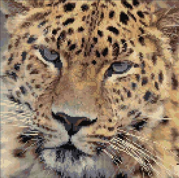 Embroidery Kit 317