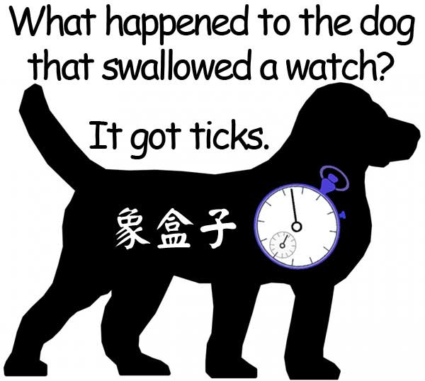 dog watch ticks