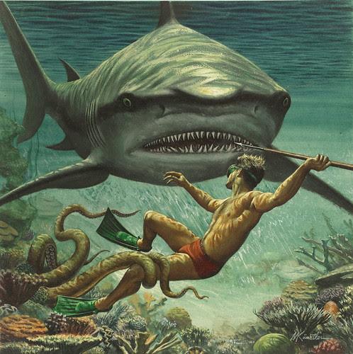 bad day at shark reef