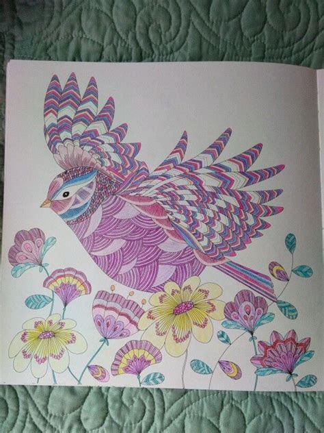 pencils km millie marotta animal kingdom bird millie