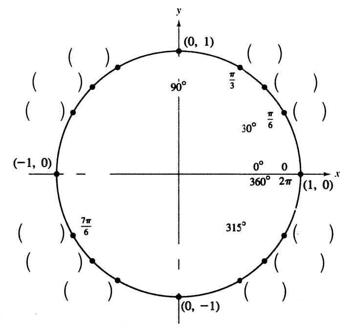 подборе числа на окружности тригонометрия картинки медицинских