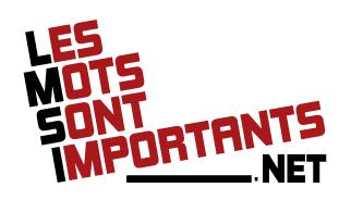 logo lmsi.net