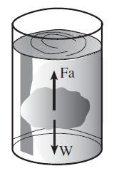Hukum Archimedes Benda Melayang