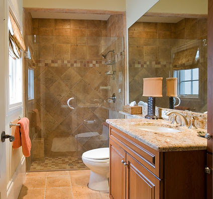 Bathroom Layout on Shower Stalls   Bathroom Shower Stall Designs And Products