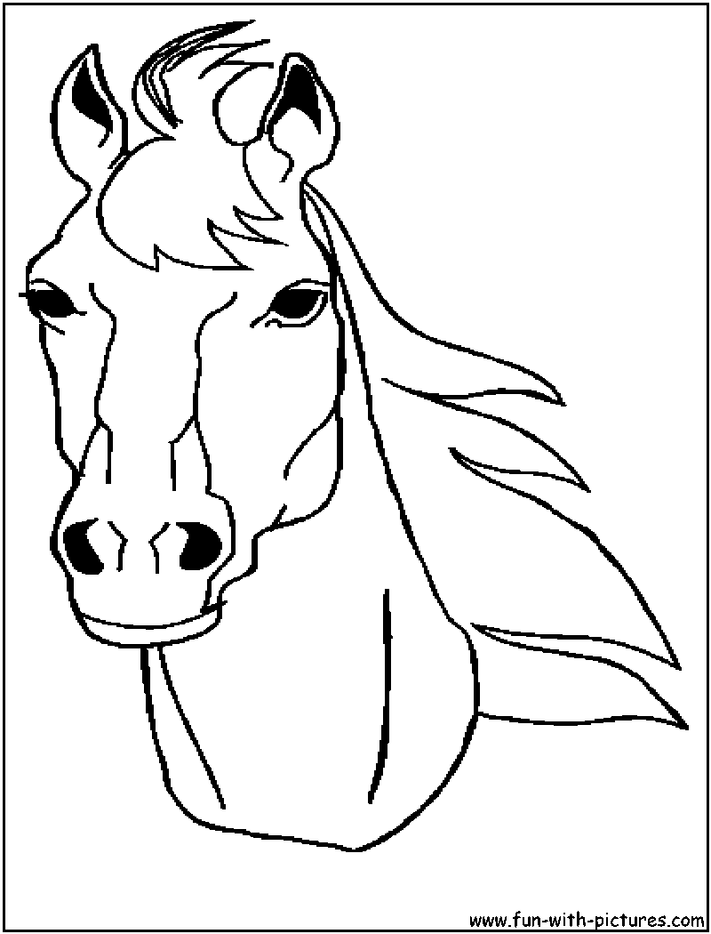 Jeux de coloriage cheval  imprimer