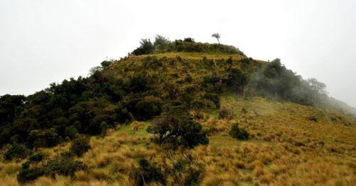 El área natural protegida preserva un ecosistema natural frágil.