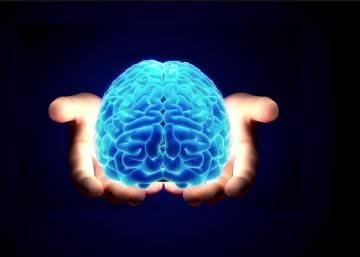 El cerebro es un mosaico de mutaciones