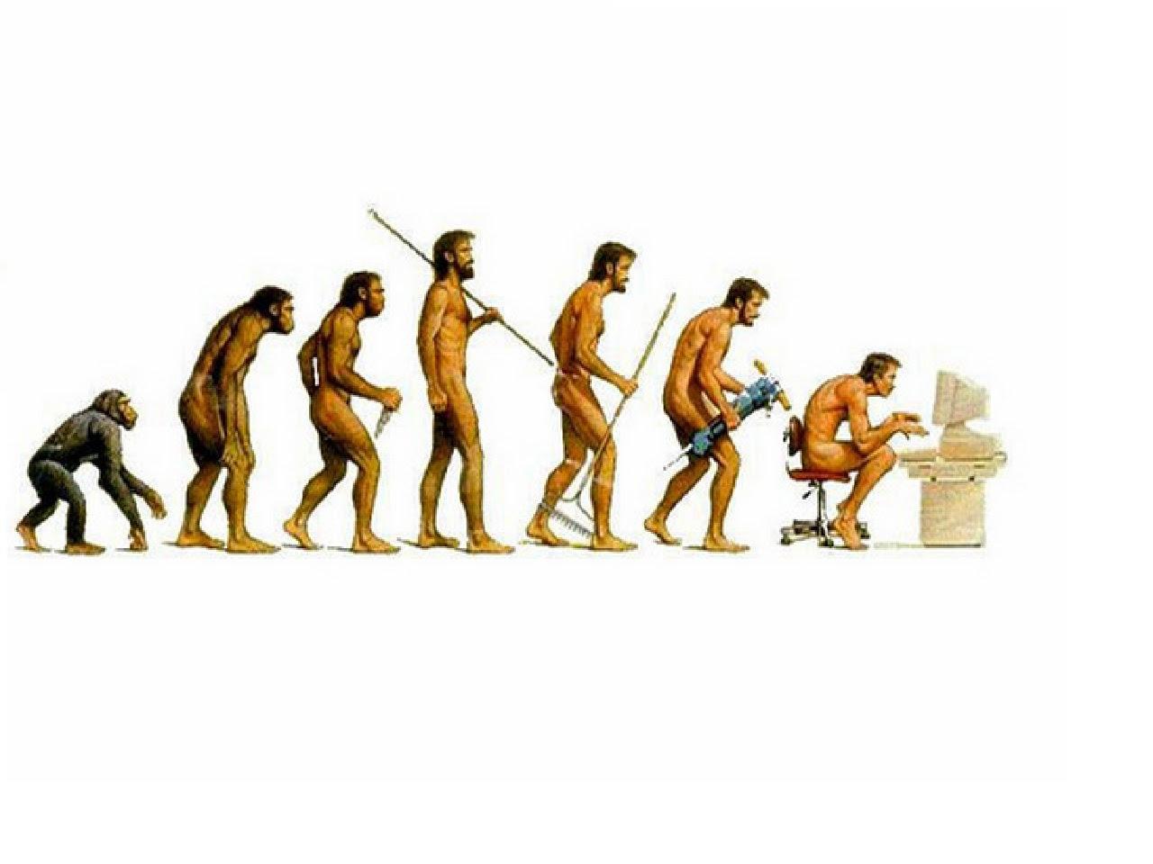 Evolution 131