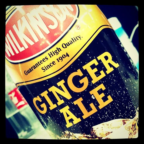 WILLKINON GINGERALE 炭酸強い。辛い。