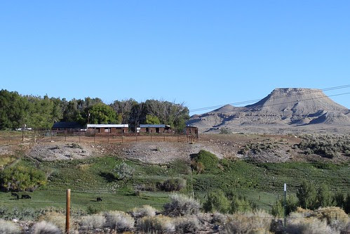 IMG_1856_Between_Riverton_WY_&_Dubois_WY