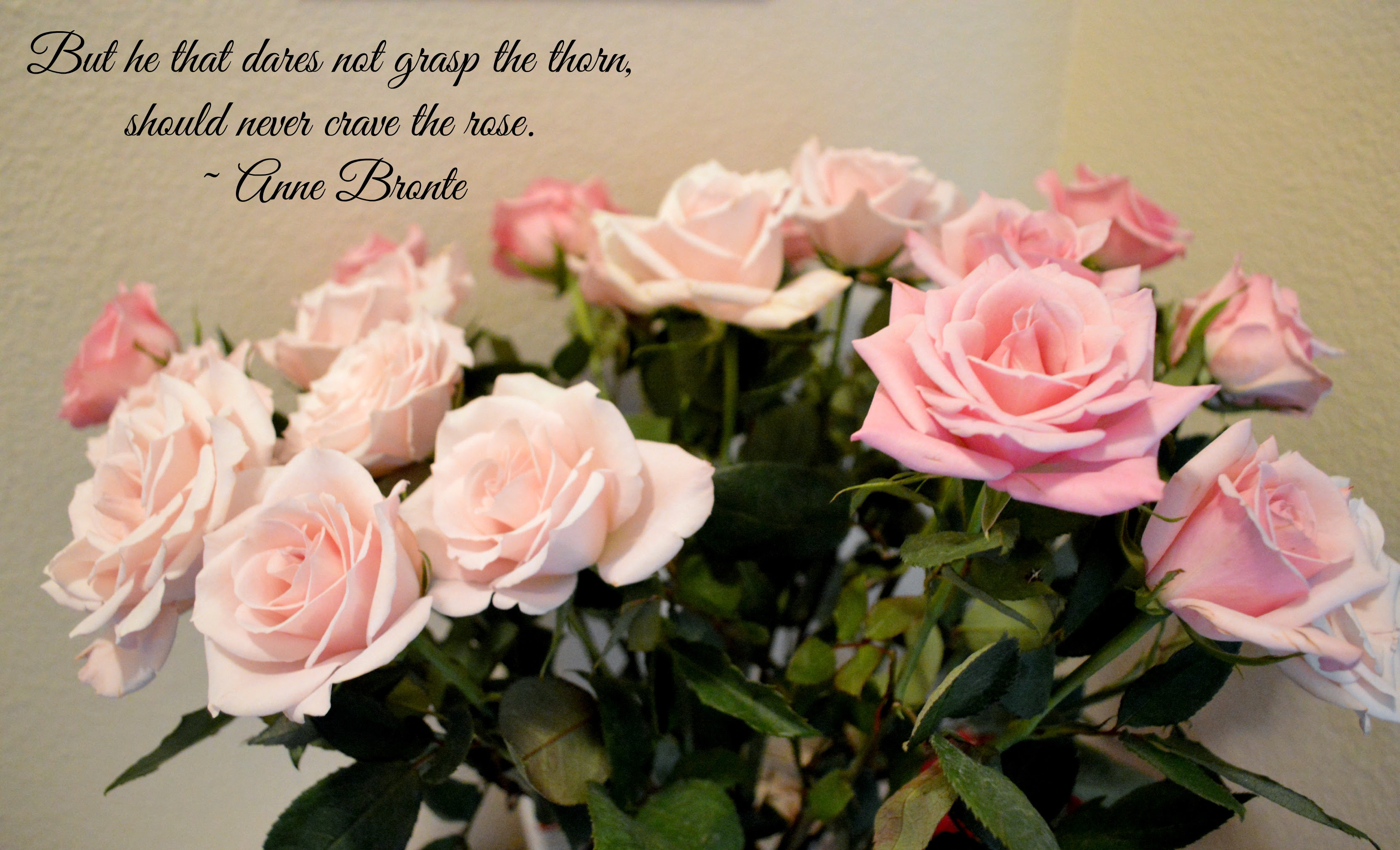 Quotes About Rose Garden 57 Quotes