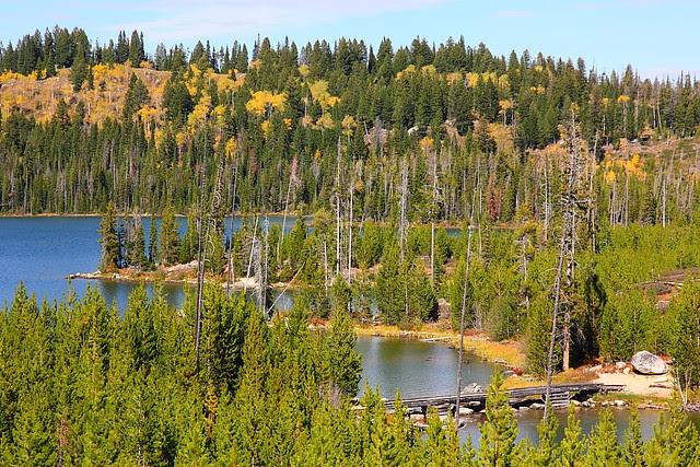 IMG_8239 Taggart Lake, Grand Teton National Park
