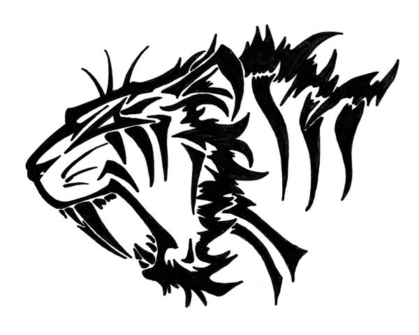 The Best Free Sabertooth Drawing Images Download From 26 Free