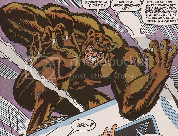 Image result for superhero bear