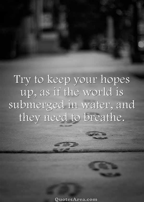 Try To Keep Your Hopes Up Quotes Area