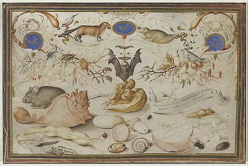 Georg (Jorus) Hoefnagel - Allegory of Winter (1589)