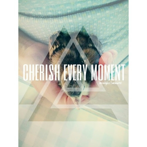 Cherish Every Moment Pictures Photos And Images For Facebook