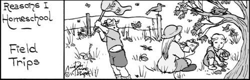 Home Spun comic strip #630