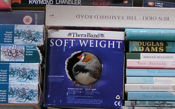 Soft Weight