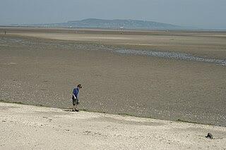 http://upload.wikimedia.org/wikipedia/commons/thumb/e/e9/IMG_SandymountStrabd1461.jpg/320px-IMG_SandymountStrabd1461.jpg