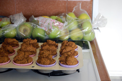 muffins + apples