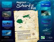Fiji Shark Campaign Poster