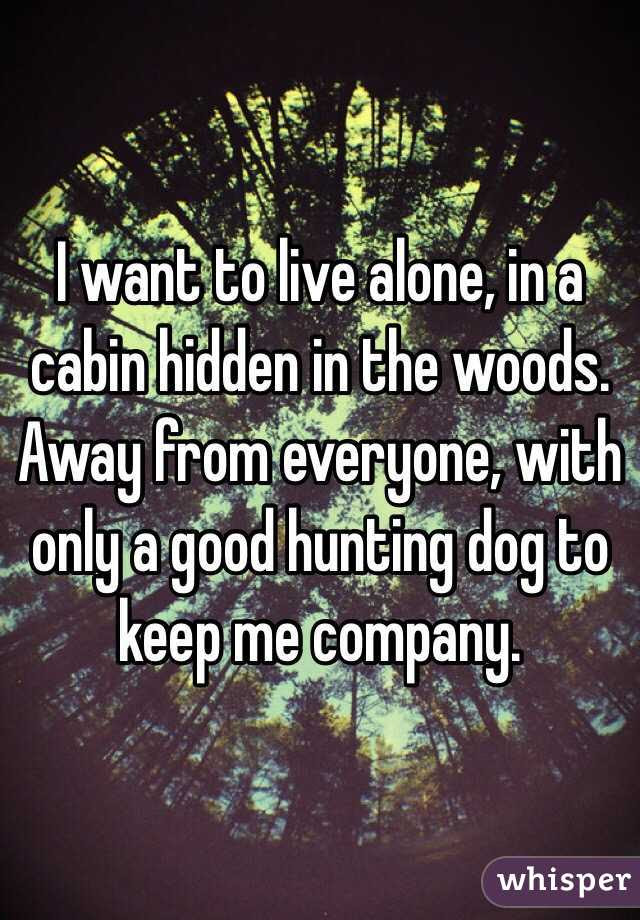 I Want To Live Alone In A Cabin Hidden In The Woods Away From