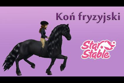 Konie Fryzyjskie W Star Stable
