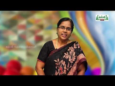 8th Social Science Bridge Course அரசியல் கட்சி-உற்பத்தி நாள் 7, 8 Kalvi TV
