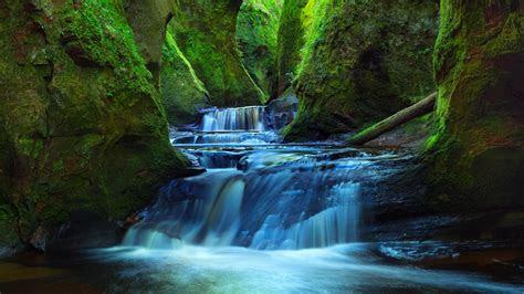 wallpaper finnich glen deep valley forest stream river