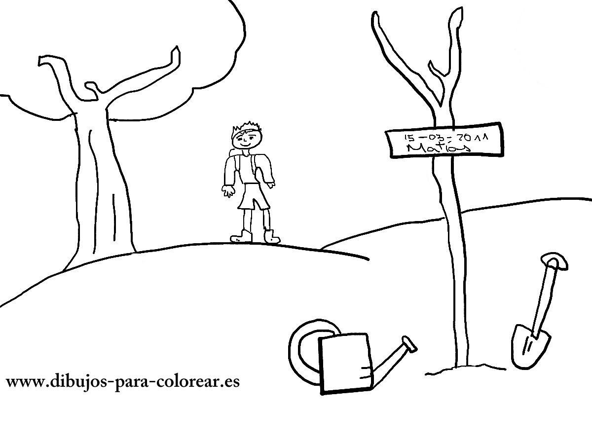 El Dia Del Arbol Dibujos Para Colorear