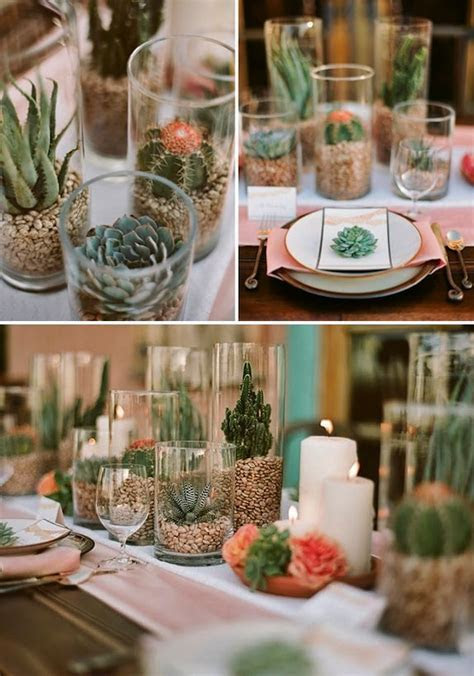 Best 25  Cactus centerpiece ideas on Pinterest   Cactus