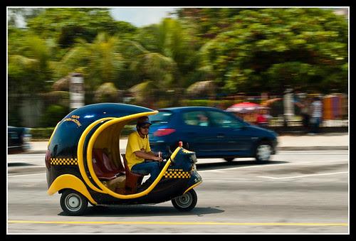 Coco sobre ruedas