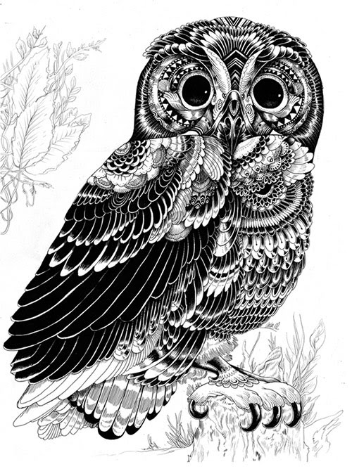 02 AnimalDrawing in Incredibly Amazing Animal Illustrations by Iain Macarthur