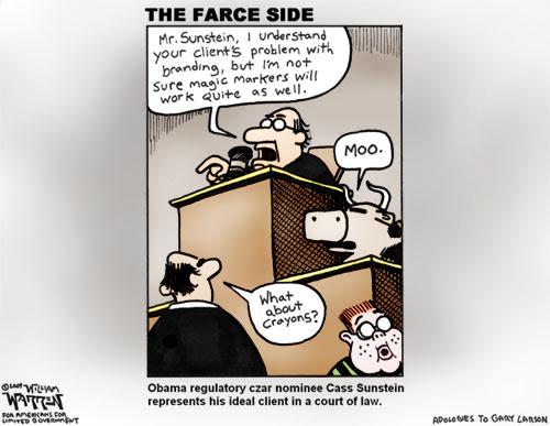 Cass Sunstein the Farce Side